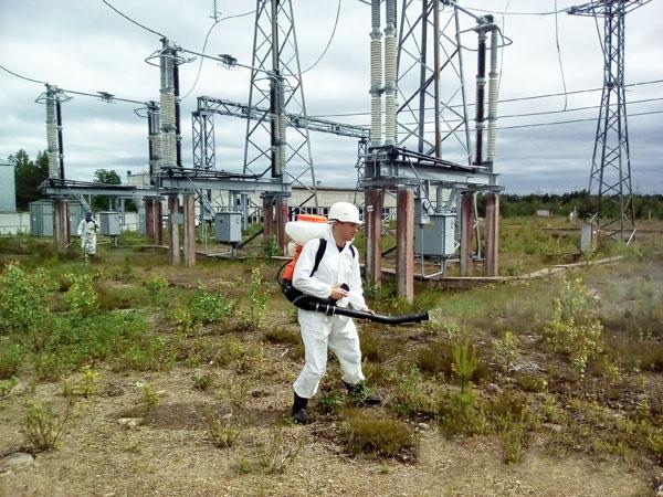 Гербицидная обработка ЛЭП в Челябинске